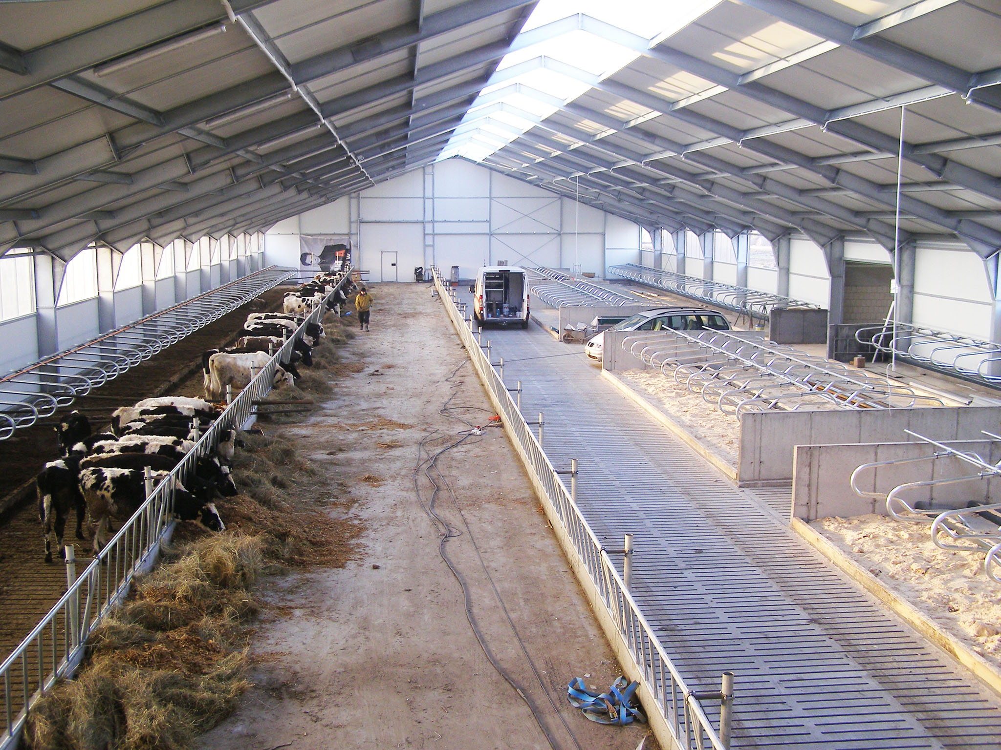 Obora wolnostanowiskowa dla 140 krów mlecznych